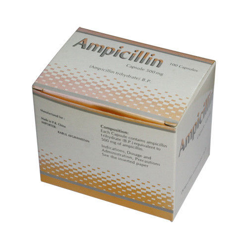 Synthetic Derivative Ampicillin Capsules 250 mg 500 mg Oral Antibiotic Medications